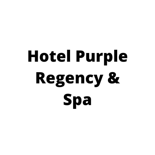 offers and deals at Hotel Purple Regency & Spa Zirakpur-Shimla Highway in Zirakpur