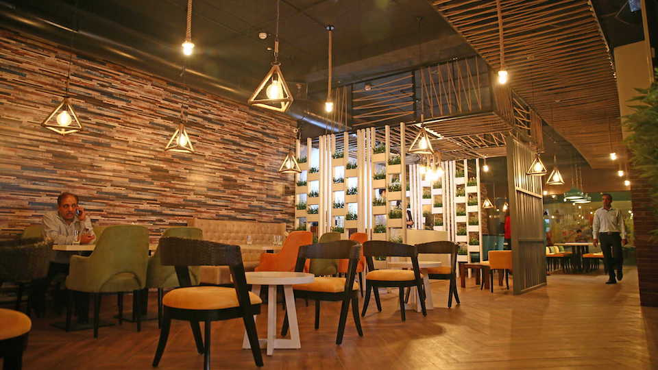 Falcon Cafe Lounge Sector-16 Panchkula