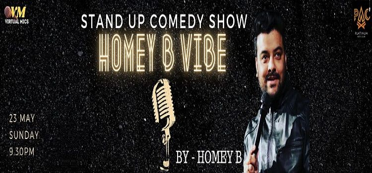 Homey B Vibe: Online Stand-Up Comedy Show