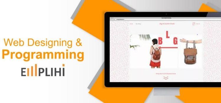 Virtual Web Designing & Programming