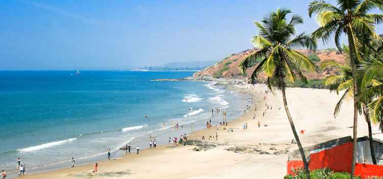 Going to Goa? Here Are The Best Places to Enjoy the Sun, Sea and Surf