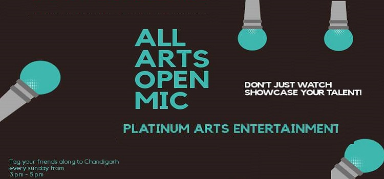 All Arts Open Mic In Chandigarh by Platinum Arts Club