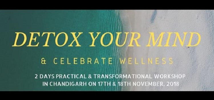 Detox Your Mind & Celebrate Wellness: Workshop In Chandigarh