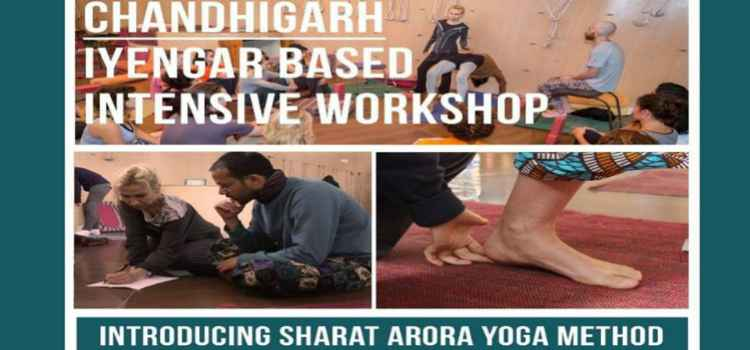 Intensive Yoga Workshop At Yog Amore, Chandigarh!