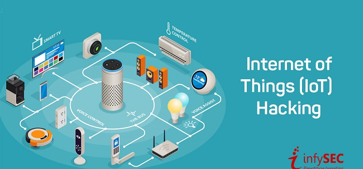 Internet of Things Online Hacking