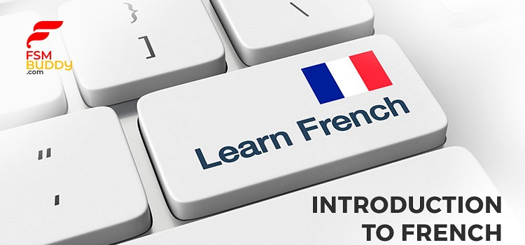 Online Introduction to French