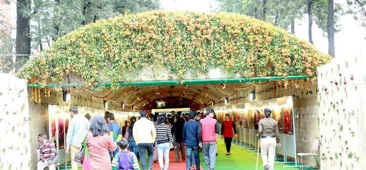 Mark Your Calendar: Chandigarh Rose Festival 2020