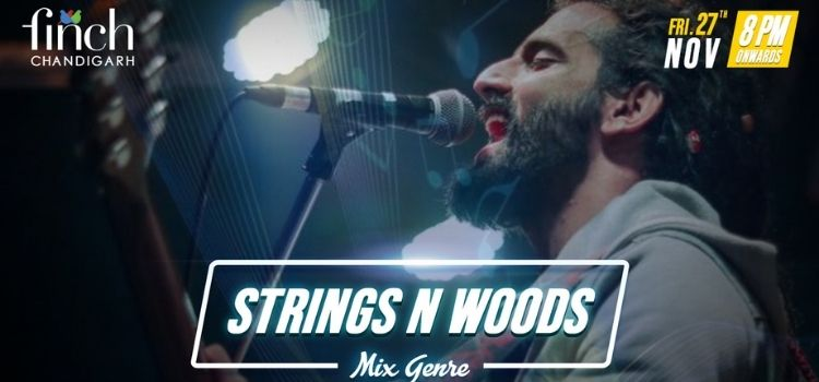 Strings N Woods Band Live At The Finch Chandigarh