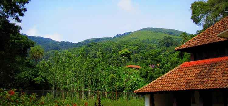 Tired of the City? Escape to These Homestays near Bangalore