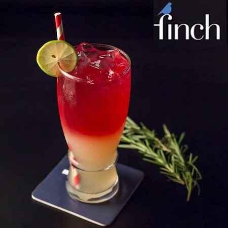 the finch chandigarh