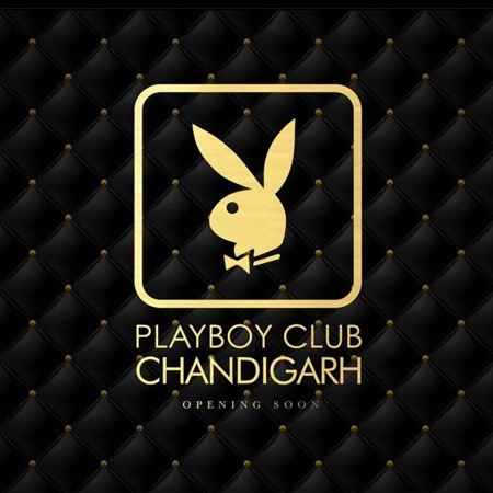wildest party hub playboy is coming to chandigarh